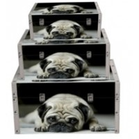 Pug - 3 Set Storage Box